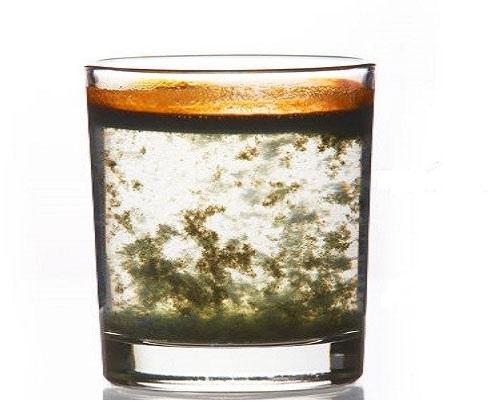 Lợi ích của nước chanh gừng hạt tiêu đen